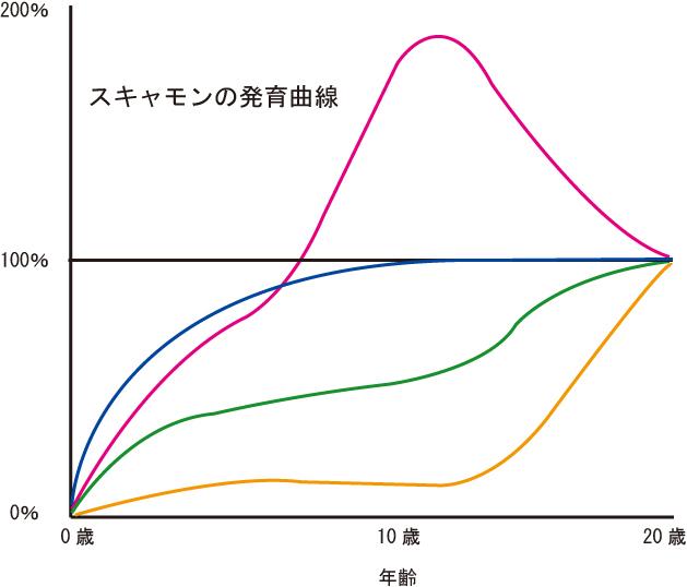 スキャモン の 発達 曲線 と は